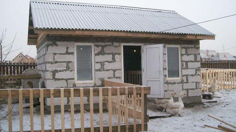 Расположение окон, дверей и крыши в помещении для гусей