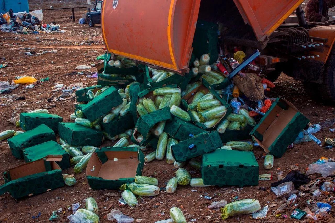 Отходы можно перерабатывать