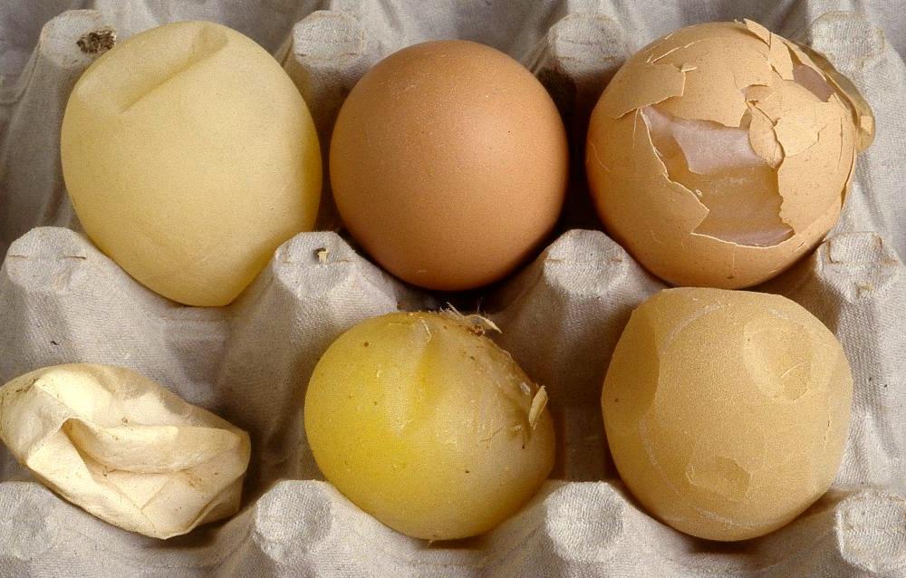 Дефекты яичной скорлупы