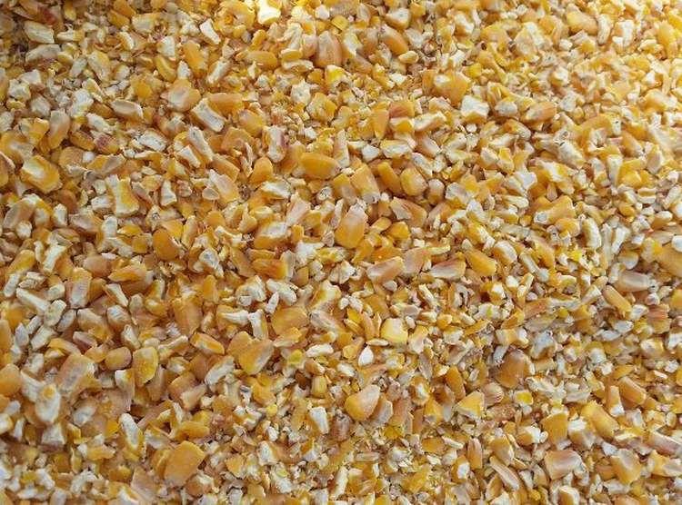 Дроблена кукуруза