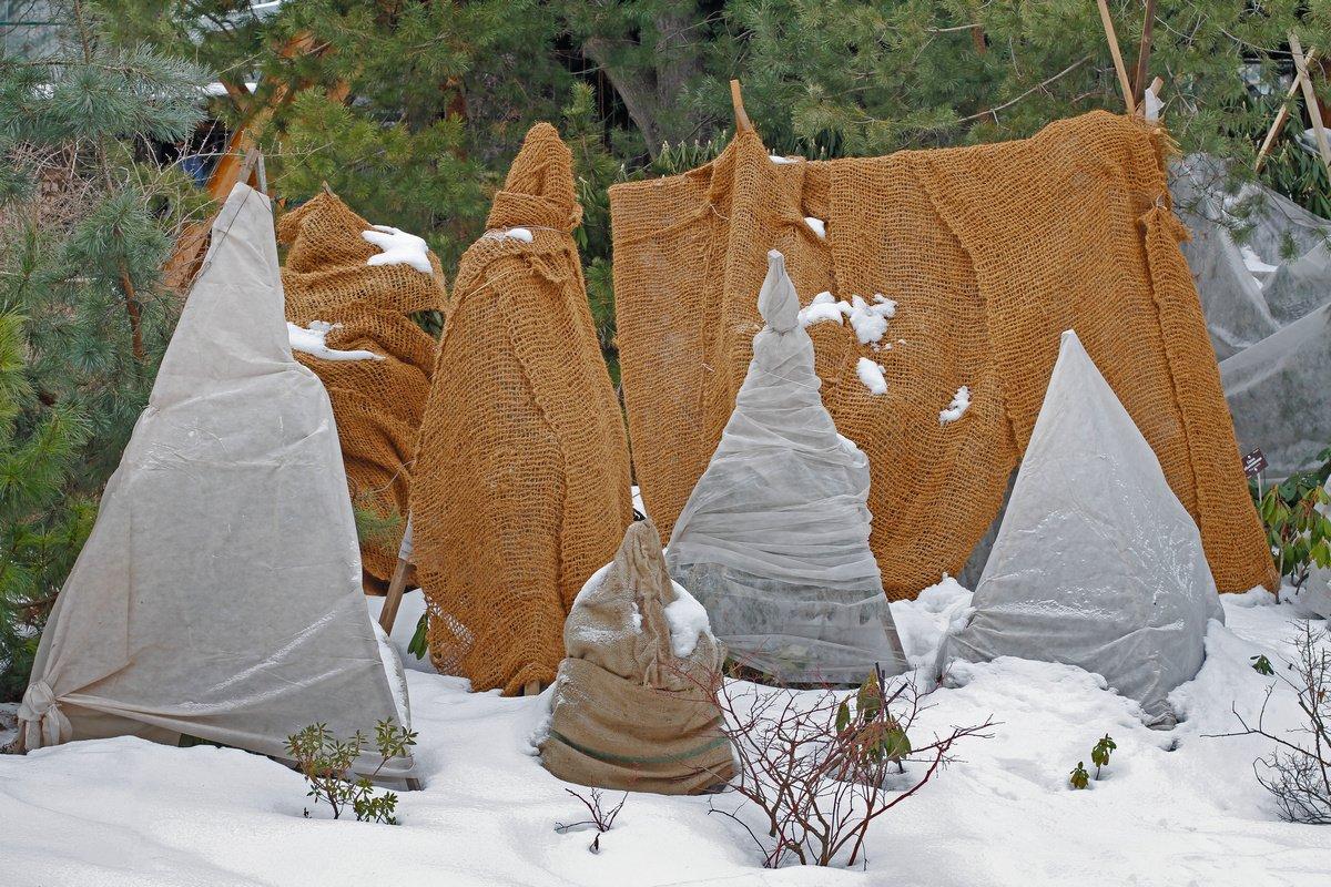 Зимой нужно проверять укрытия