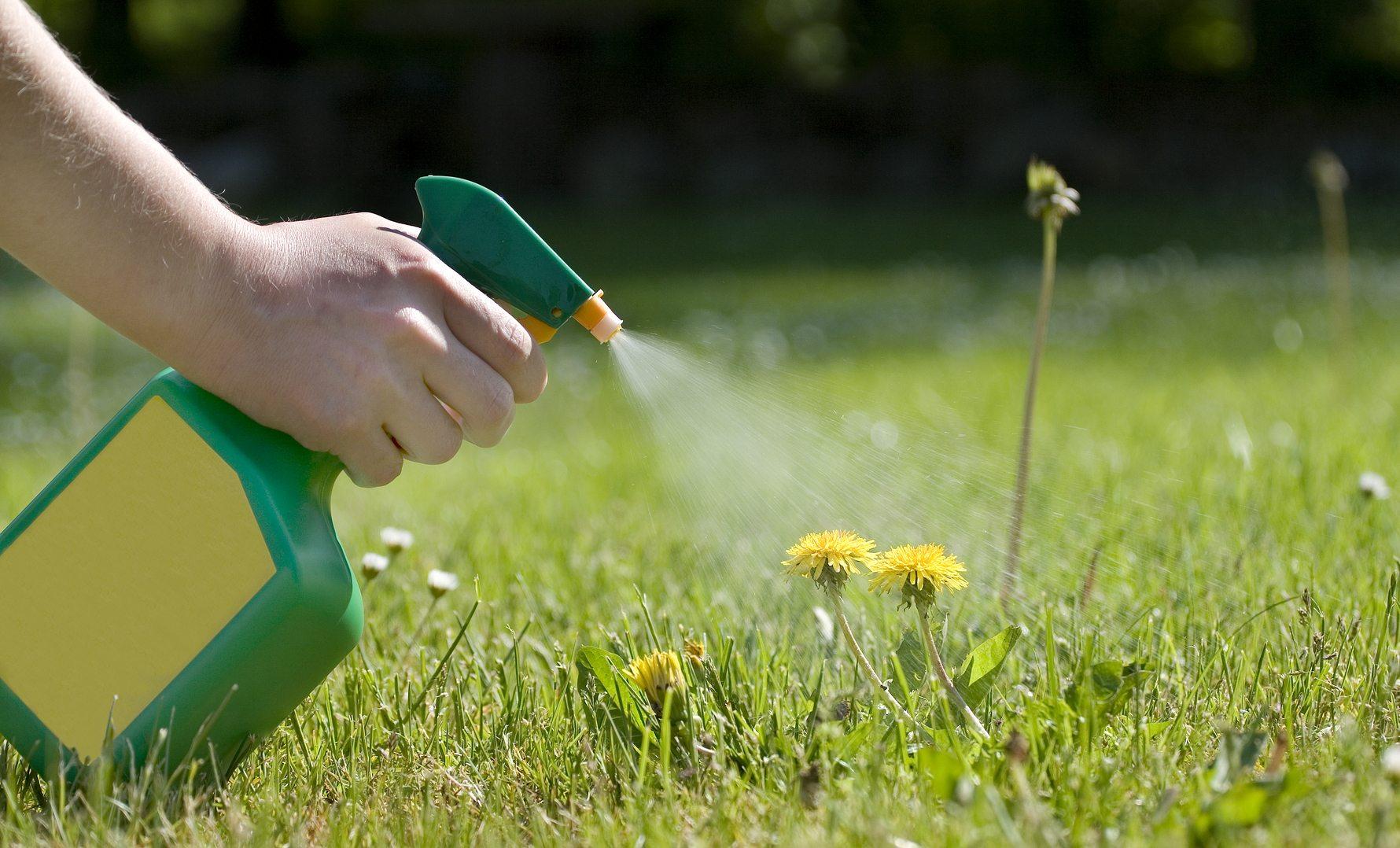 У пестицидов есть срок годности
