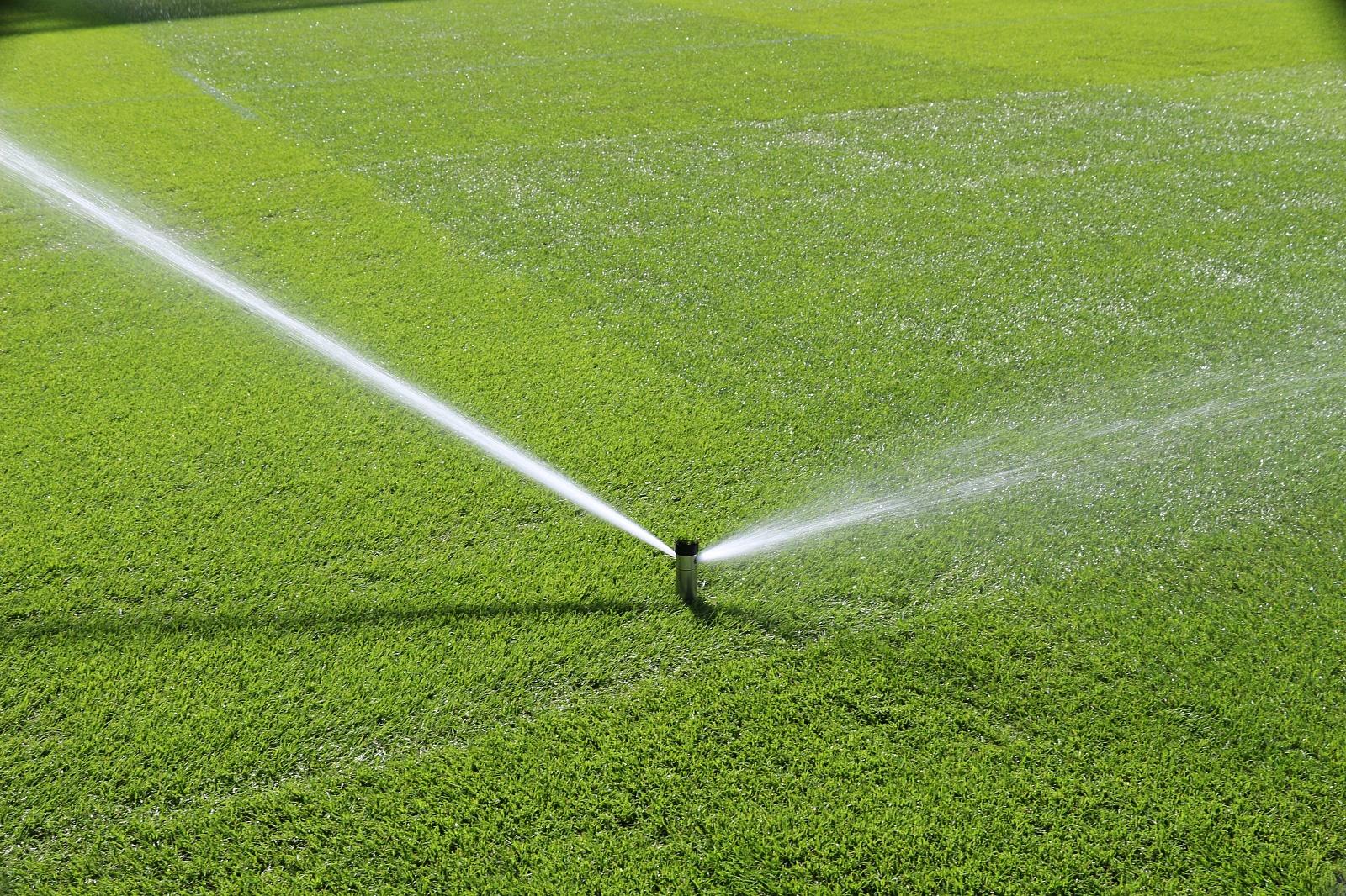 Осенью газон поливают в зависимости от погоды