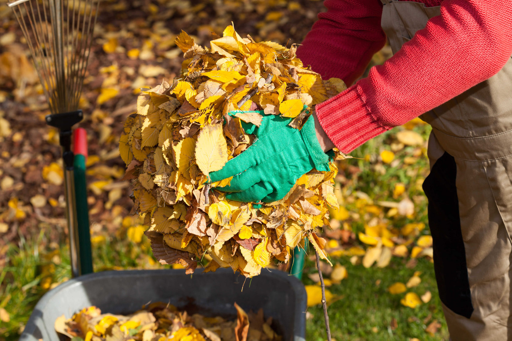 Опашие листья еще пригодятся