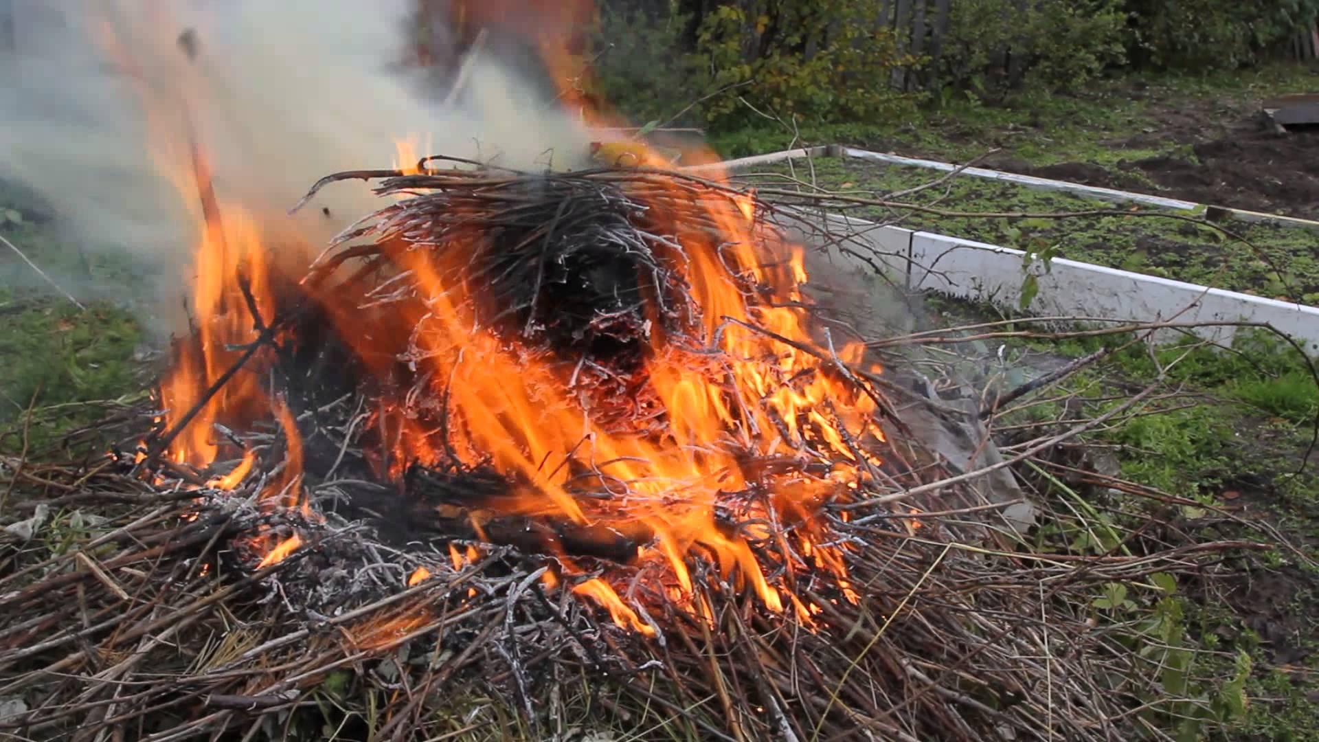 Сжигать мусор на участках нельзя