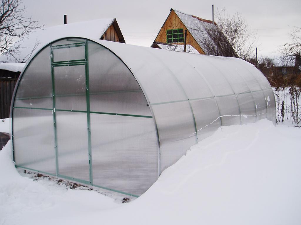 Снег нужно очищать с теплиц