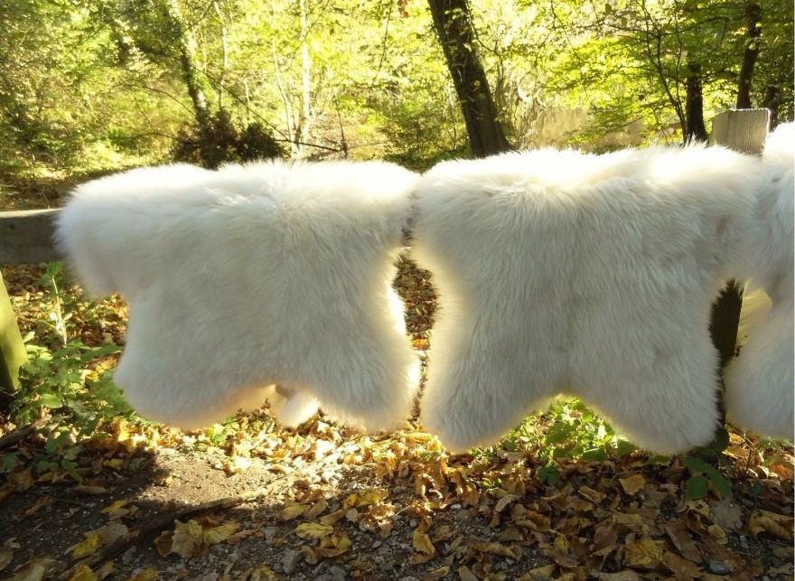 Выделанные овечьи шкуры.