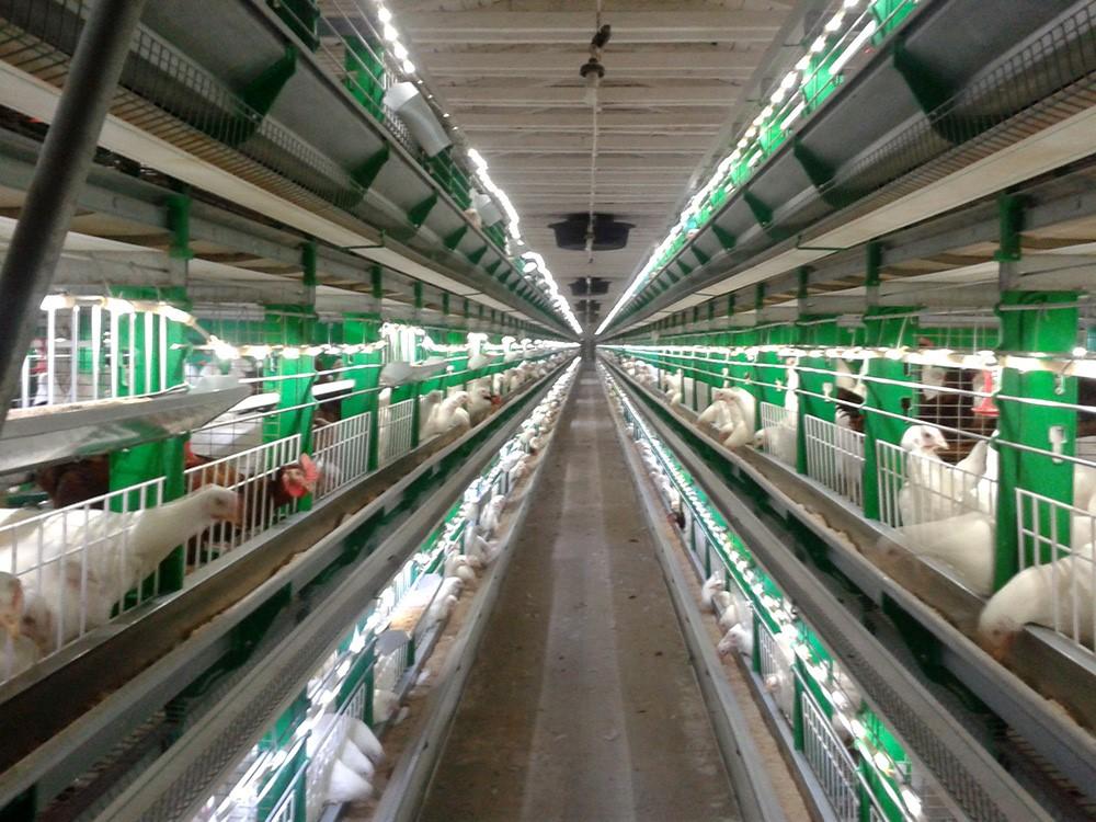 Использование светодиодных ламп в промышленных масштабах