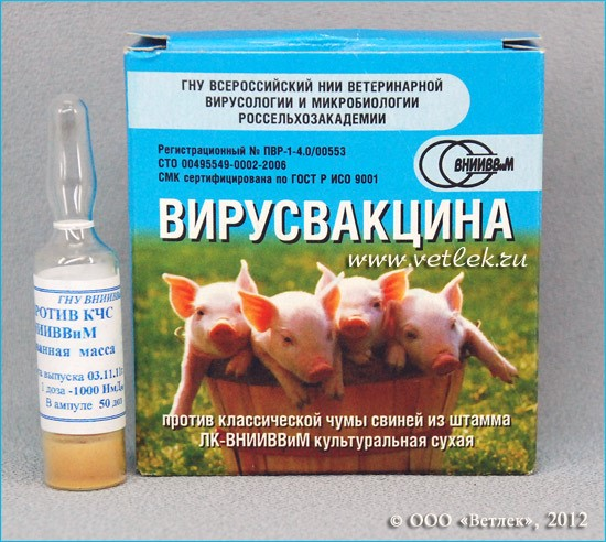 Вакцина против КЧС