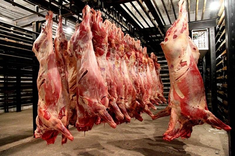 Больных лейкозом отправляют на мясокомбинат