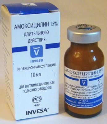 Амоксилицин