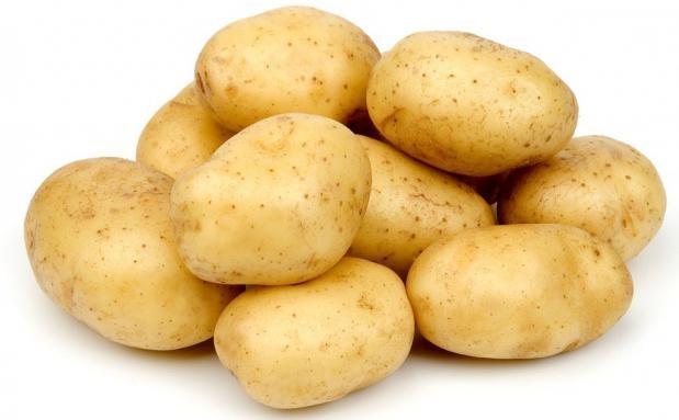 Клубни картофеля сорта Гала