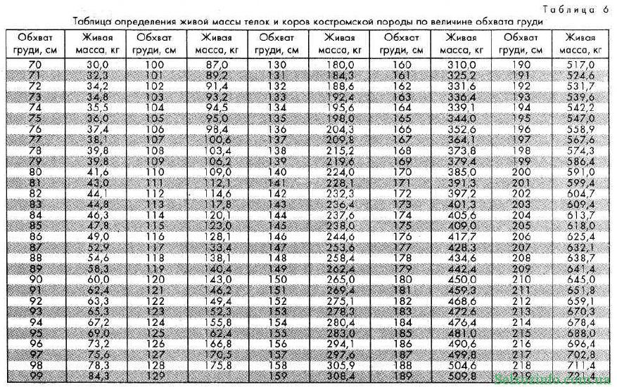 Таблица определения массы КРС