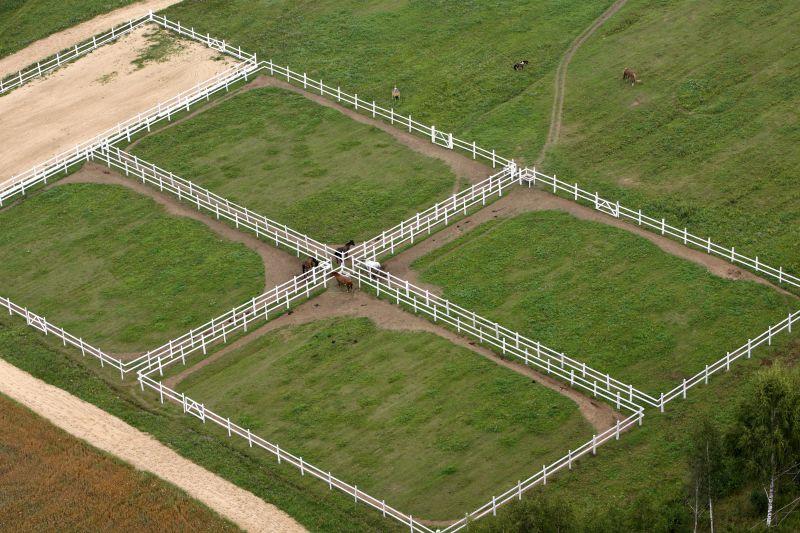 Левады для лошадей