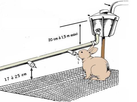 Ниппельная автопоилка, подключенная к водопроводной системе
