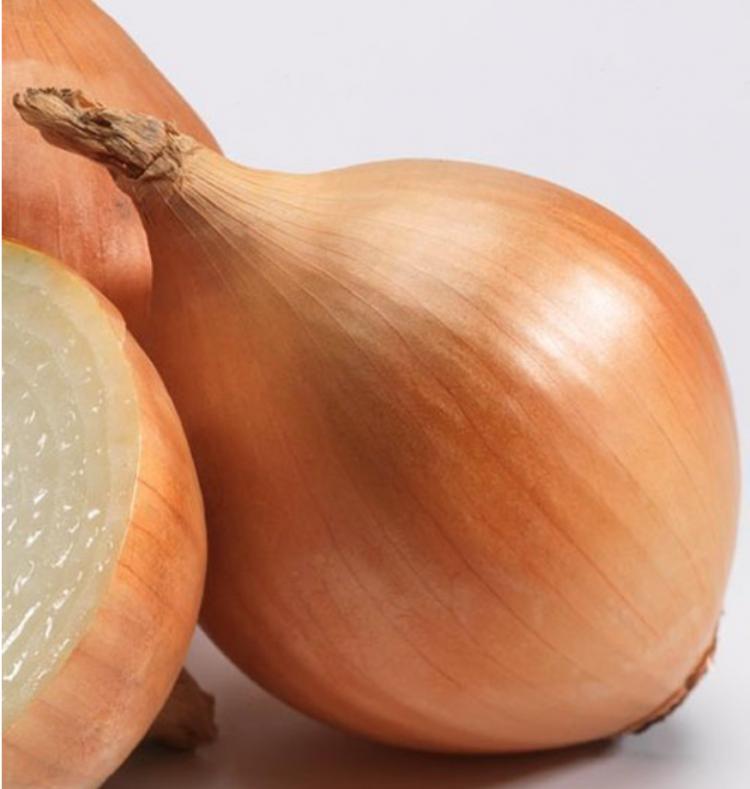 Сочная луковица «шетана»