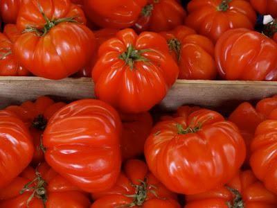 Красивые плоды сорта Пузата хата