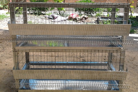 Клетка для перепелов из сетки на деревянном каркасе