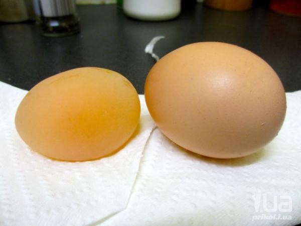 Яйцо без скорлупы