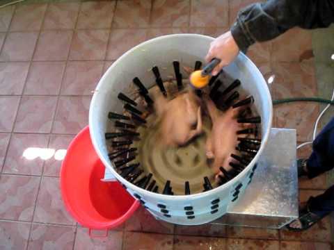 Автомат для ощипа гусей