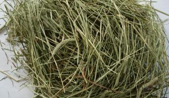 Пучок сена для коровы