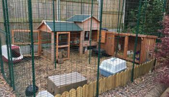 Каким должно быть помещение для кроликов
