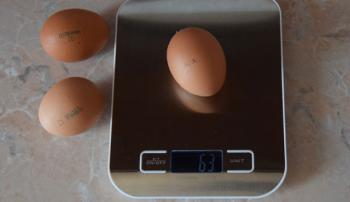 Вес яйца