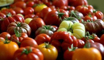 """Плоды томата """"Японский краб"""""""