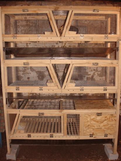 Клетки для кроликов по технологии Золотухина