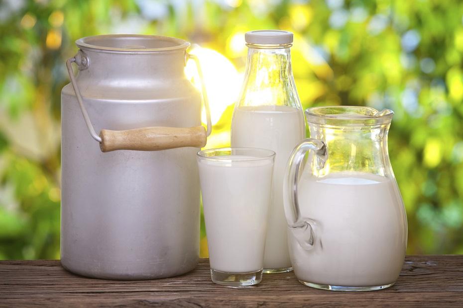Молочное скотоводство