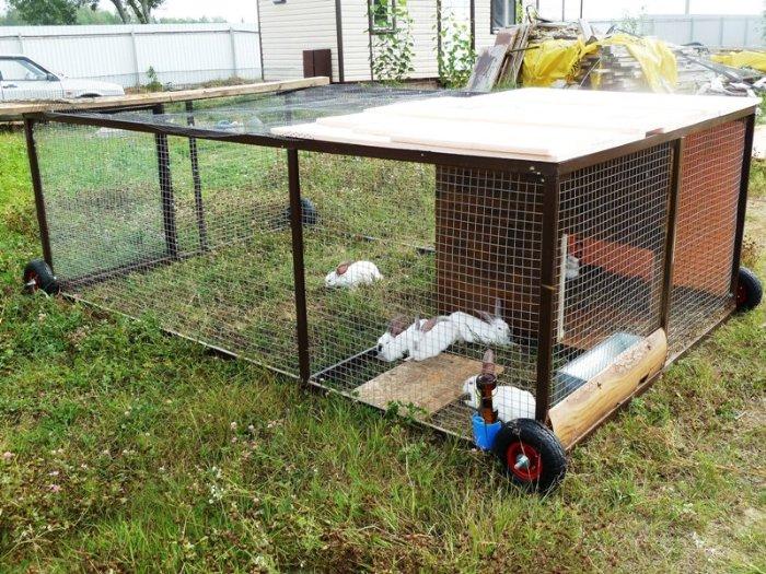 Самодельный вольер для кроликов